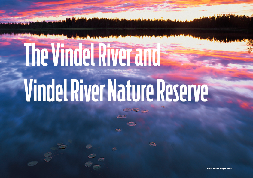 vindel-river-nature-reserve